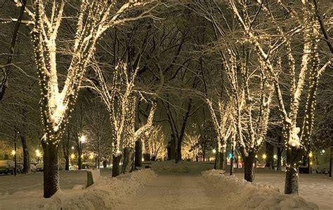 dreaming of a beautiful christmas elle s lookbook
