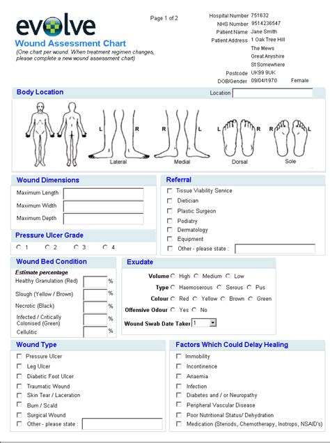 Wound Chart Template diagram for charting position for charting elsavadorla
