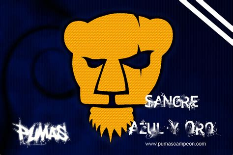 imagenes chidas de los pumas pumas unam wallpapers wallpapersafari