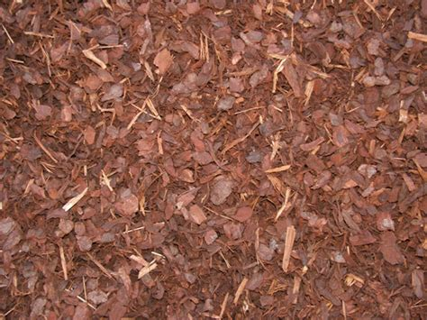 Landscape Bark Can Bark Be Used To Landscape Gardens And Lawns Tufudy
