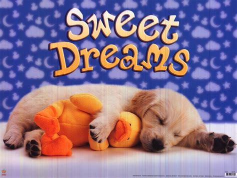puppy dreams animalia poster puppy sweet dreams asleep with duck scholastic print ebay