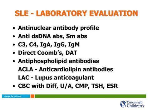 sle lab report introduction sle apa lab report 28 images cover letter graduate