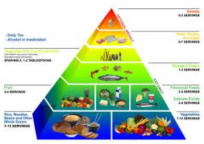 practical biology science for everyone science and the evolution of food pyramids