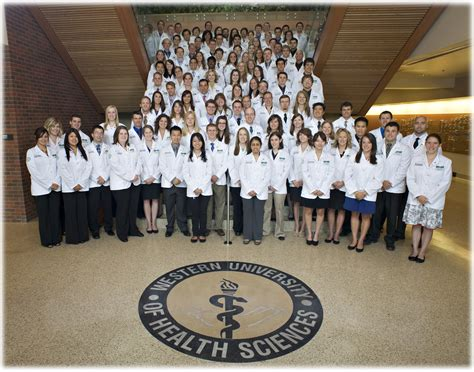 Pomona College Mba Science Program by Cus Information College Of Osteopathic Medicine Of