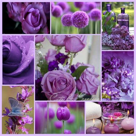 purple mood 1000 images about moodboard on pinterest pastel nelly
