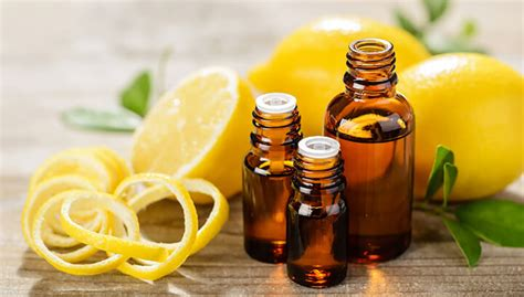 essential oils for skin allergies 10 essential oils for allergies and how to use them