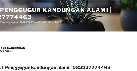 Pil Penggugur Janin Sumatra Jual Obat Aborsi Aman 082227774463