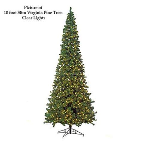 virginia pine slim artificial christmas tree 2012 target autograph foliages slim virginia pine tree