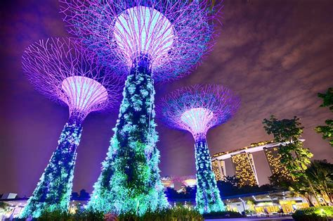 Garden Craft - free photo singapore gardens by the bay free image on pixabay 1896764