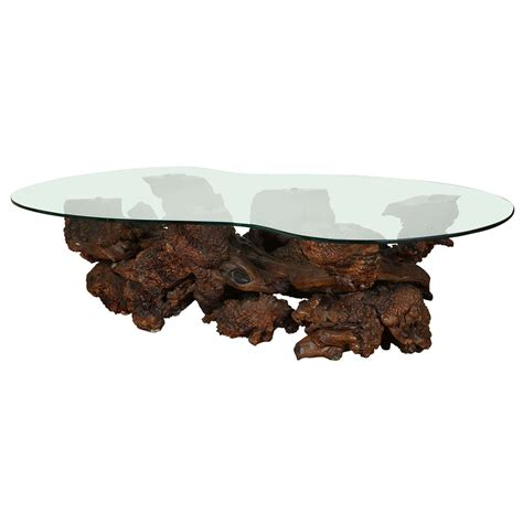 Drift Wood Coffee Table Spectacular Sculptural Large Burl Driftwood Coffee Table At 1stdibs