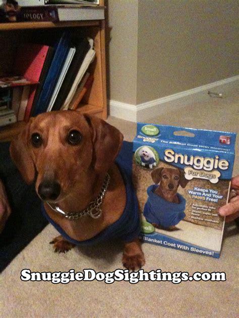 snuggie for dogs snuggie for dogs snuggie sightings