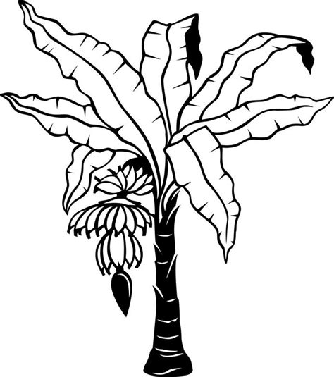 Banana Tree Drawing Clipart Best Banana Tree Coloring Page