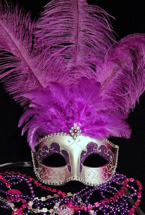 pink mardi gras pink and silver mardi gras mask photograph by