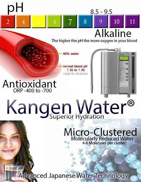 Kangen Water Detox by Best 25 Ionised Water Ideas On Kangen Water