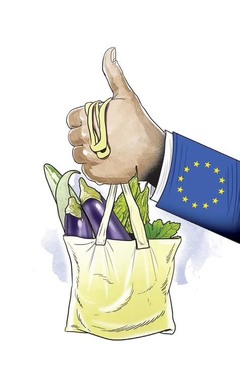 vegetables to europe veggies get an noc to europe the new indian express