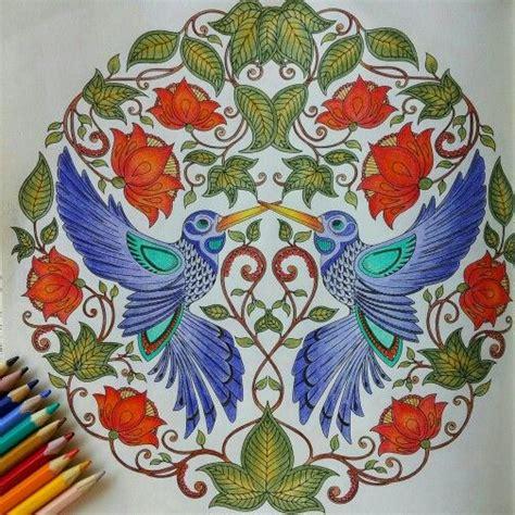 secret garden colouring book wiki 17 best images about humming birds secret garden beija