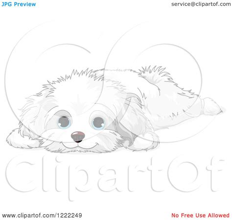 coloring pages of maltese puppies pin bloody skull tattoos on pinterest