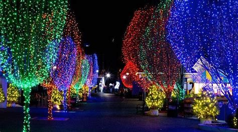 hershey park light show hersheypark christmas candylane discounted tickets at