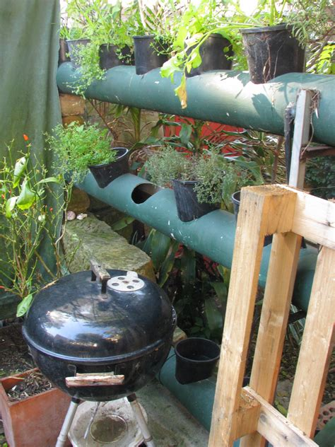 vertical garden using pvc pipe ordinary 2 extraordinary