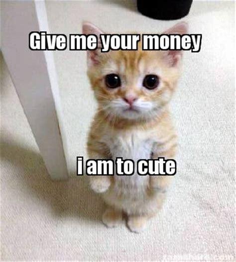 Give Me Money Meme - meme creator give me your money i am to cute meme