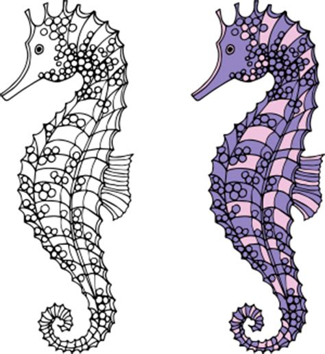 hard seahorse coloring pages flamingo free adult coloring page kidspressmagazine com