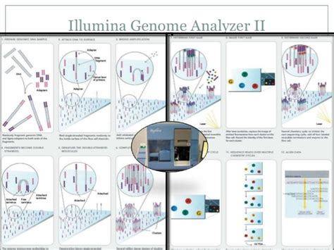 illumina sequencing principle metagenomics