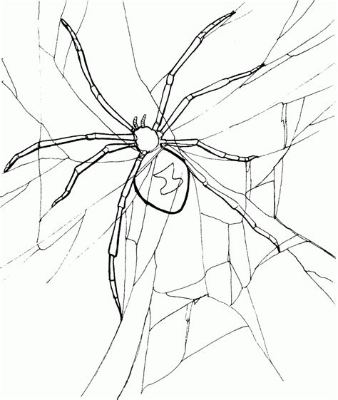 Free Printable Spider Coloring Pages For Kids Spider Coloring Page