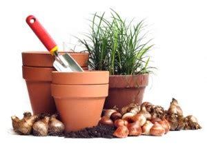 offerte di lavoro giardiniere manutentori verde offerta di lavoro a firenze