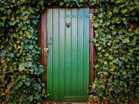 door  ivy covered house  ultra hd wallpaper