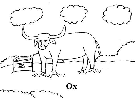 Ox Coloring Printable Page For Kids Ox Coloring Page