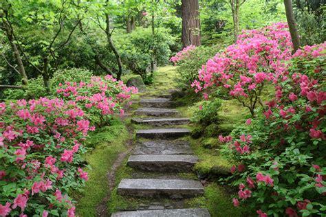 garden photos a walk through the natural garden portland japanese garden