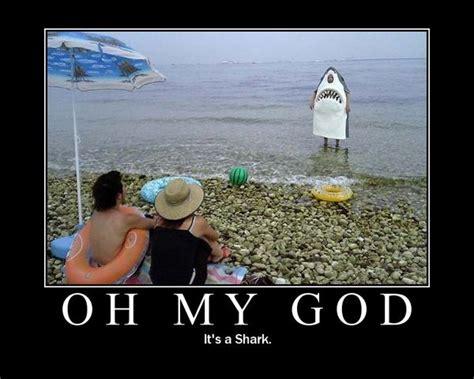 oh my god oh my god shark imghumour