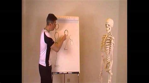 cadenas musculares youtube rcp liberar cadenas musculares cadena de apertura en