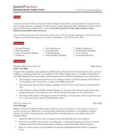 Musician Resume Exle by Industry Executive Free Resume Sles Blue Sky Resumes
