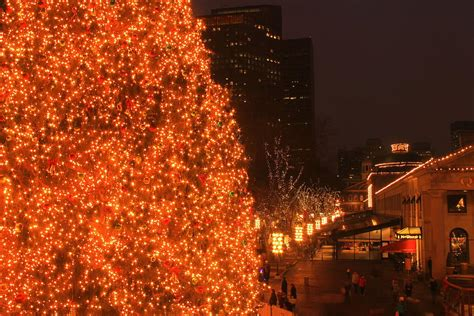 boston christmas tree at faneuil hall marketplace