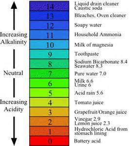 ph color scale ph scale chart