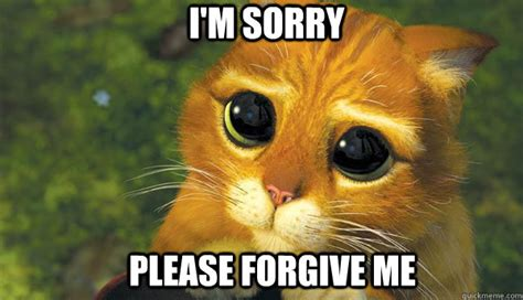 Forgive Me Meme - i m sorry please forgive me puss in boots eyes quickmeme