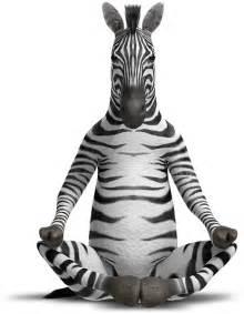 zebra pen find zen in your pen