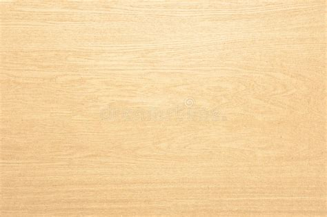 light colored wood light colored wood texture stock image image of grain