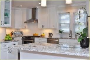 White Shaker Cabinets Kitchen by White Shaker Cabinets Kitchen Home Design Ideas