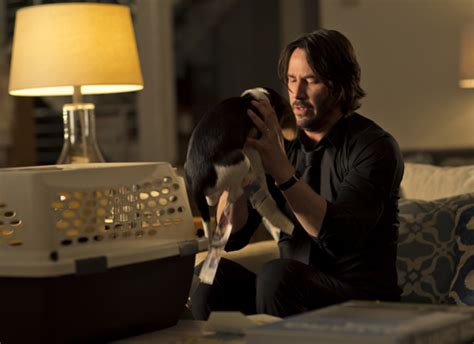 john wick tattoo say john wick film review keanu reeves rescues the action