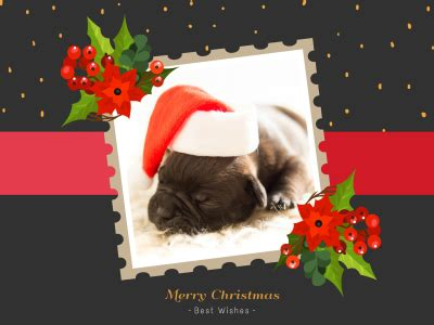 merry christmas fotor photo cards   photo card maker fotor photo editor