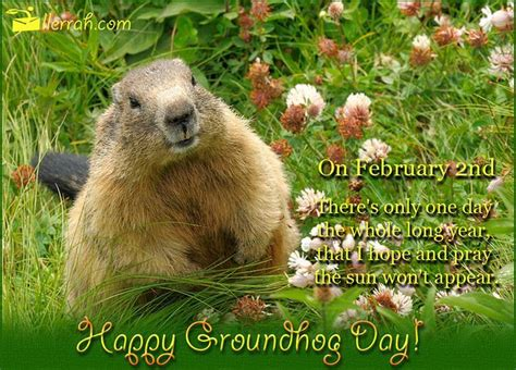 groundhog day and happy day happy groundhog day quotes quotesgram
