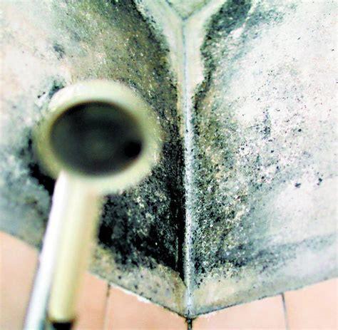 Wie Gef Hrlich Ist Schimmel Im Schlafzimmer 4839 wie schimmel entfernen schimmel im bad wie entfernen wer