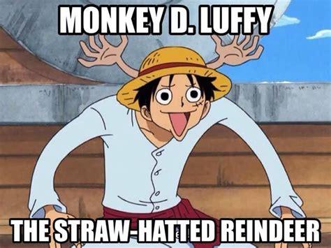 monkey  luffy memes anime amino