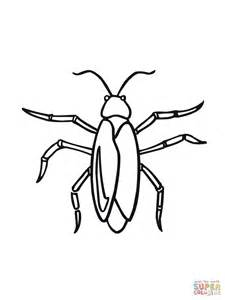 cockroach coloring coloring pages