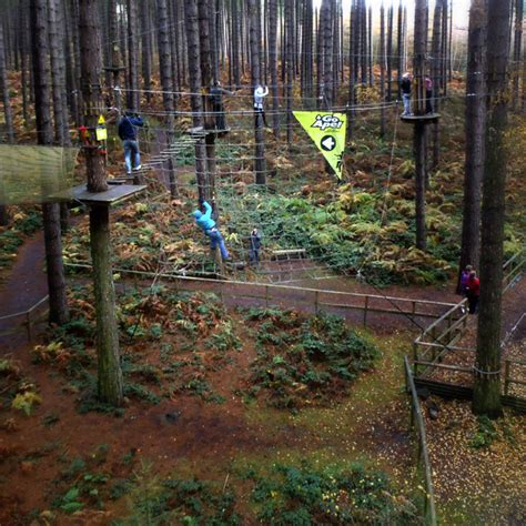 go ape tarzan swing go ape tree top adventure gt splodz blogz