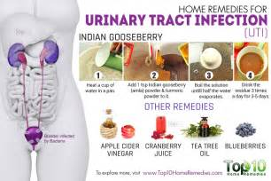 uti remedies at home home remedies for urinary tract infection uti top 10