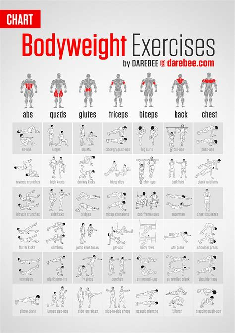 bodyweight exercises target every part of your darebee by neila never