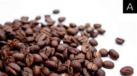 Cappucino Coffee Bean how to choose coffee beans for the office